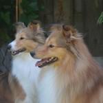 Tygo & Jillz